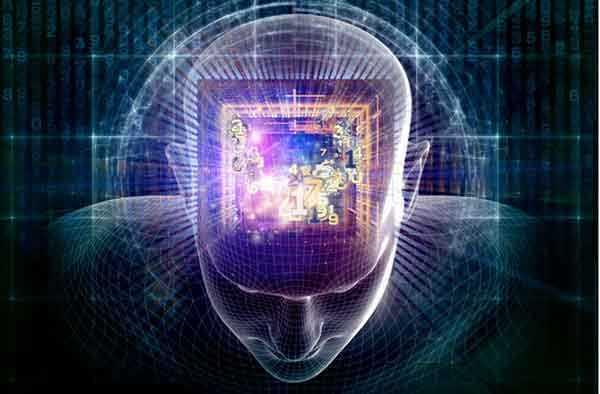 brain.chip .grids