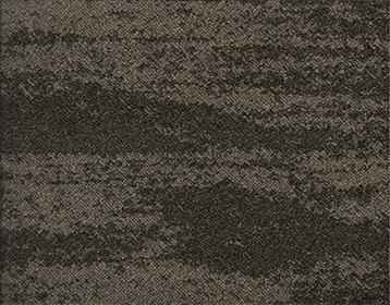 Forces - Natural Bark - Petrified Wood