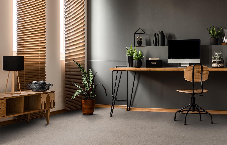 Softology - S101 - Lynx home office