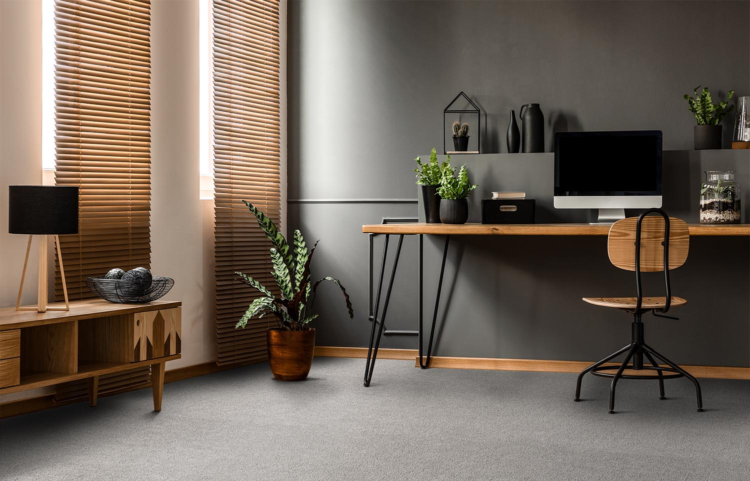 Softology - S201 - Downy home office