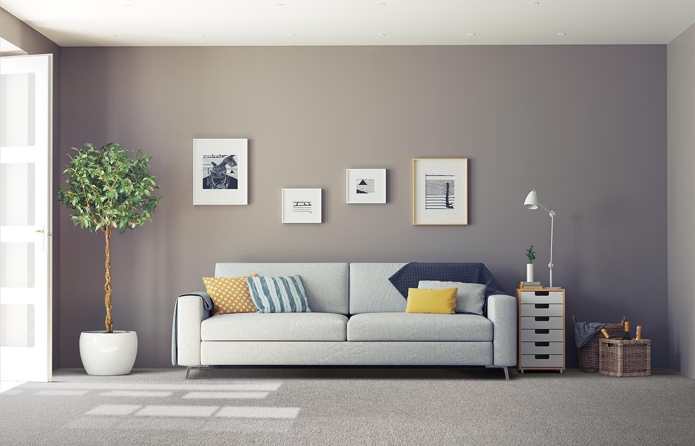 Softology - S101 - Downy classic living room