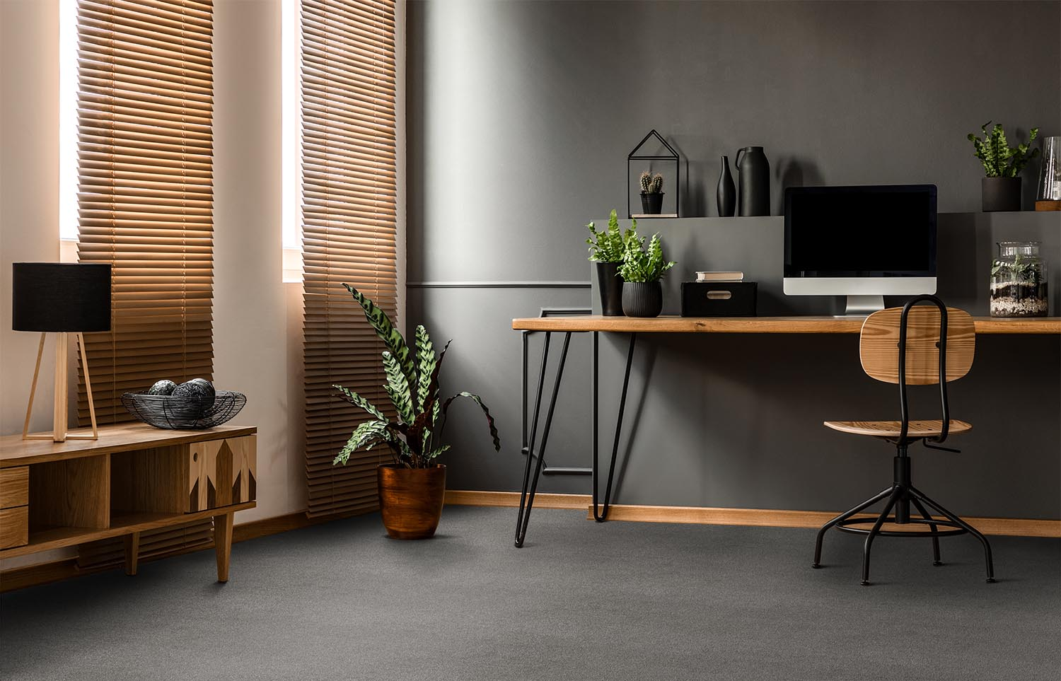 Softology - S201 - Ash home office