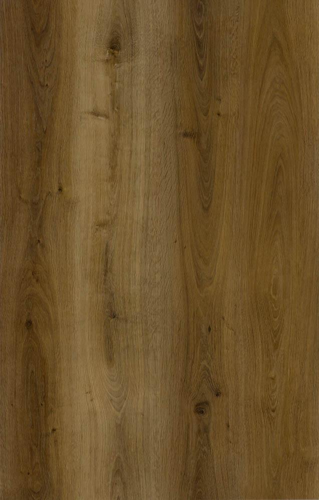 Sylvan - Cedar