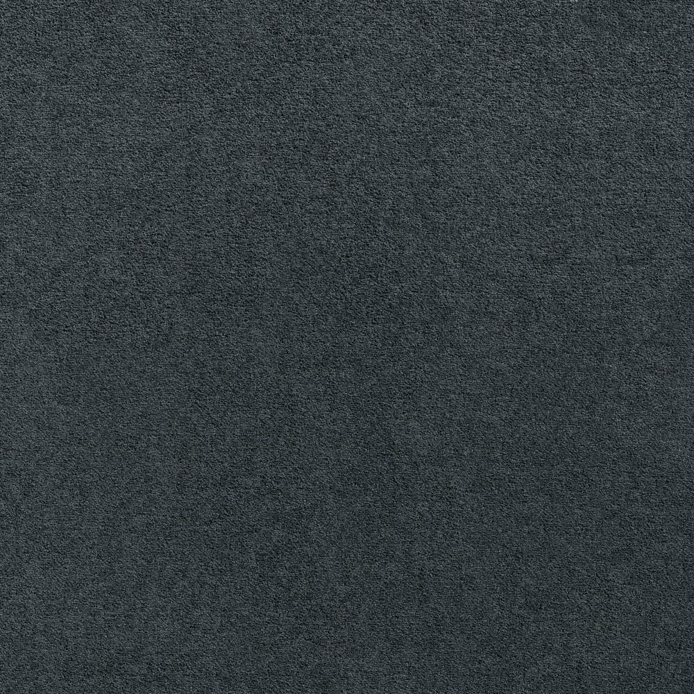 Softology - S201 - Regis