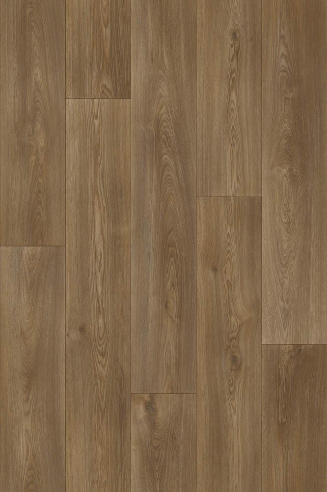 Strut - Columbian Oak 649M