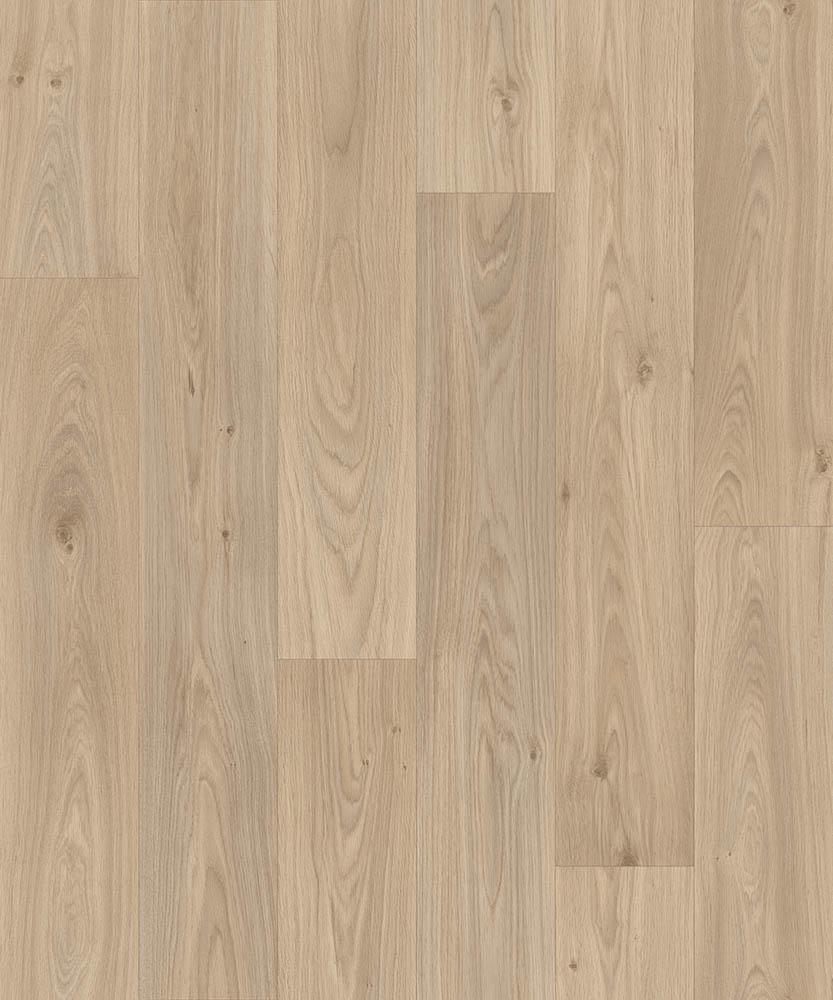 Strut - Gambel Oak