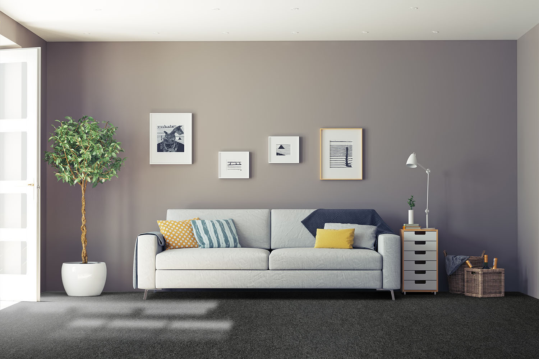 Color Rib - Ebony