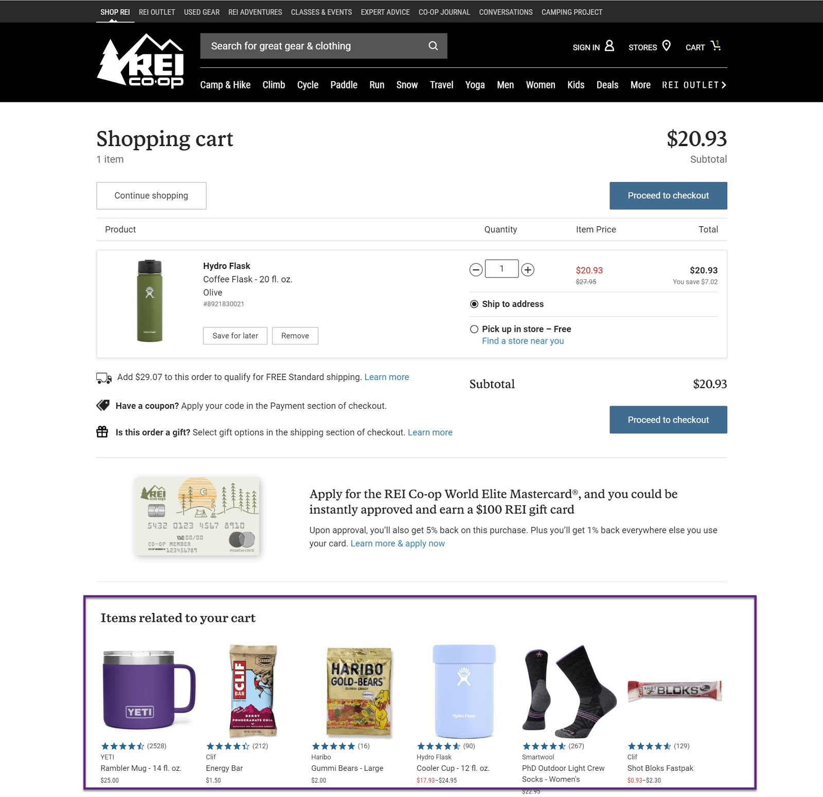 Example of a checkout page on REI's website