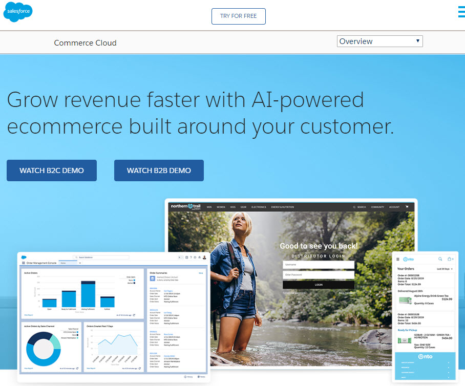 commerce cloud - Salesforce Headless Commerce