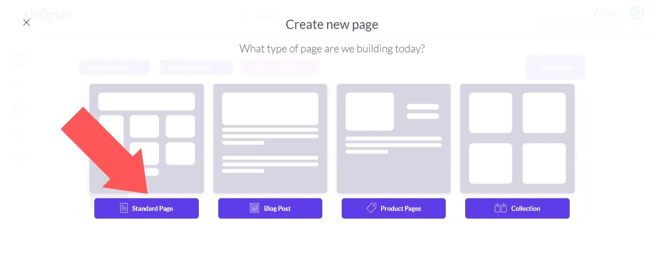 """Select """"Standard Page"""""""