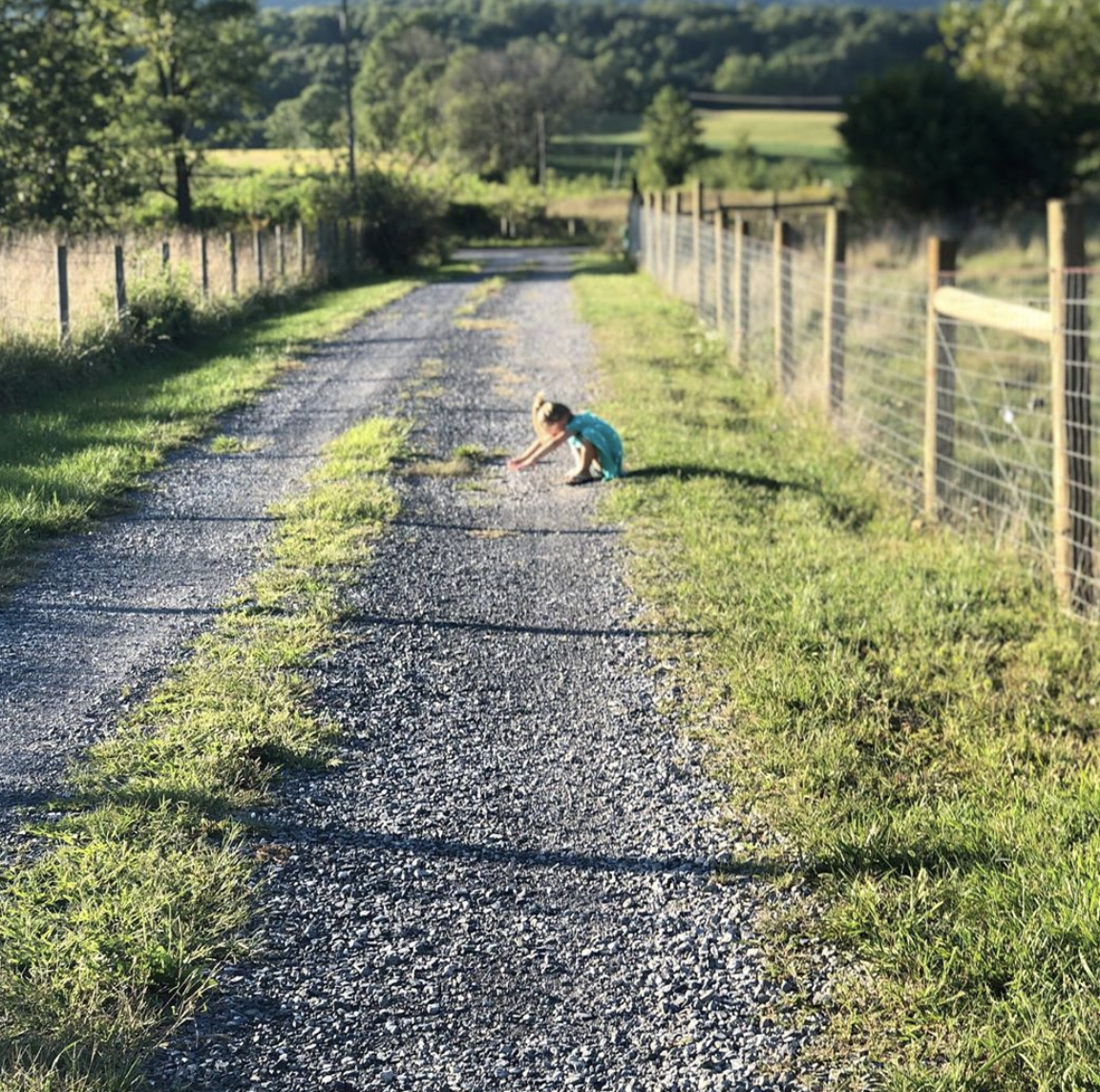 little girl playing in the field at sycamore hollow farm in Virginia