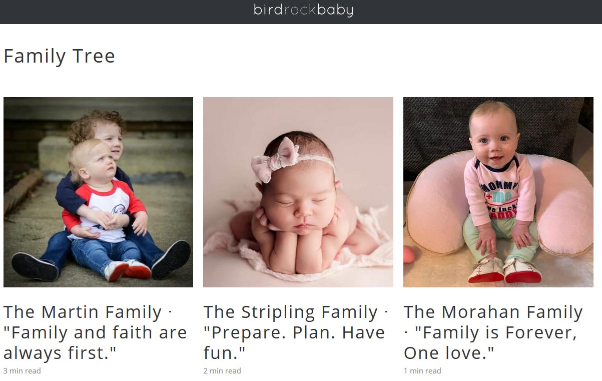 birdrock baby homepge featuring images of babies