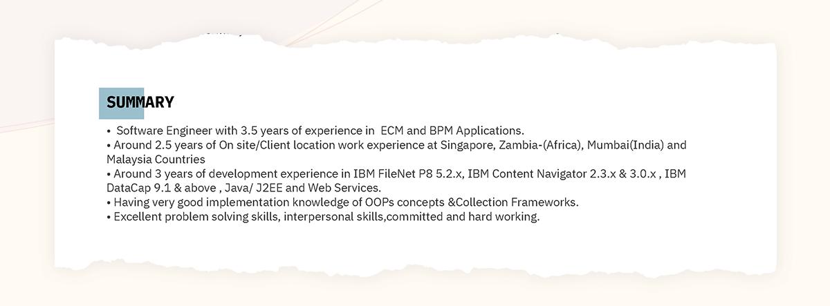 Software Developer CV example