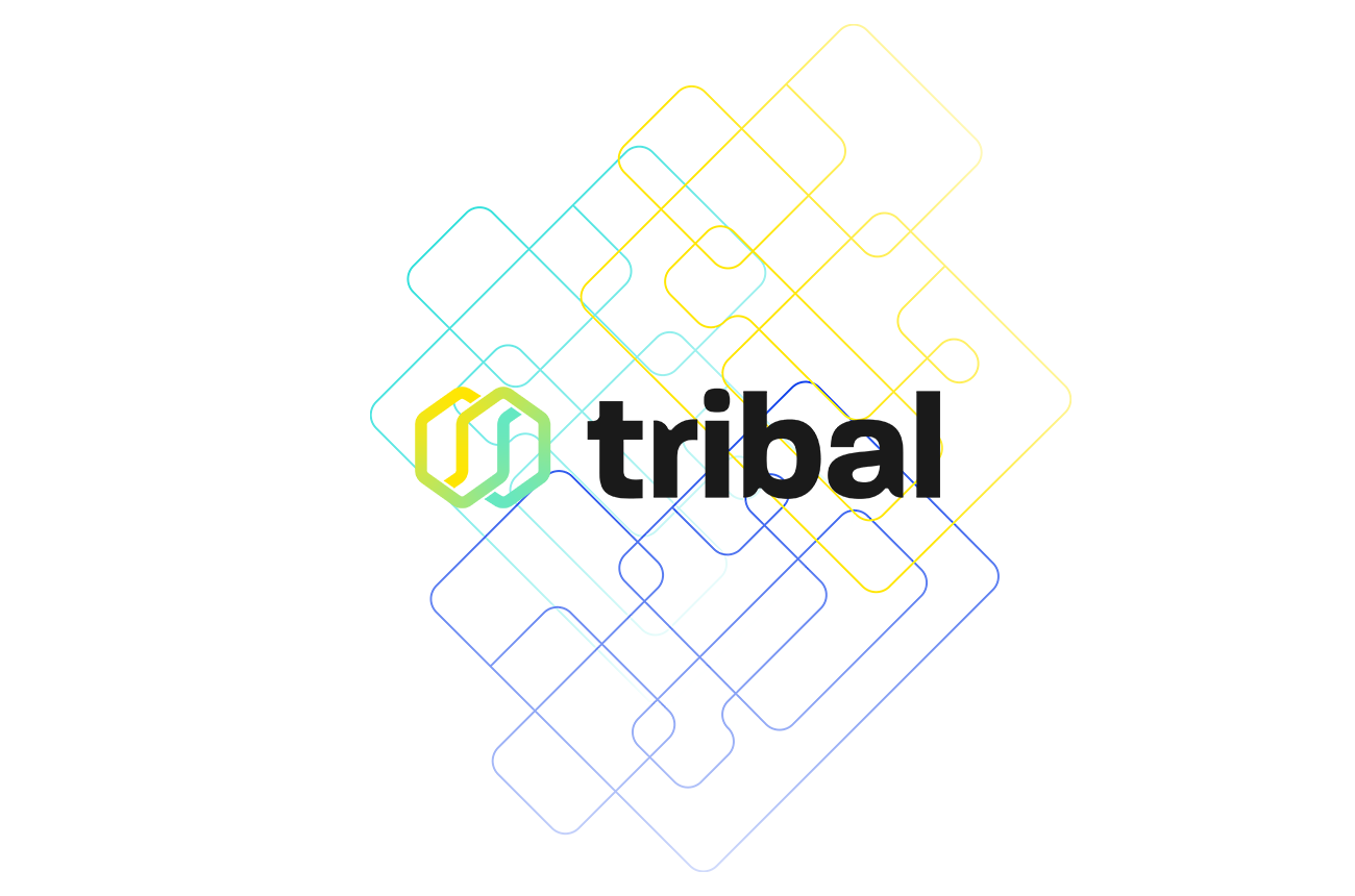 Tribal Credit Joins Visa's Fintech Fast Track Program