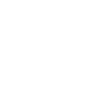 Browser Sandbox icon