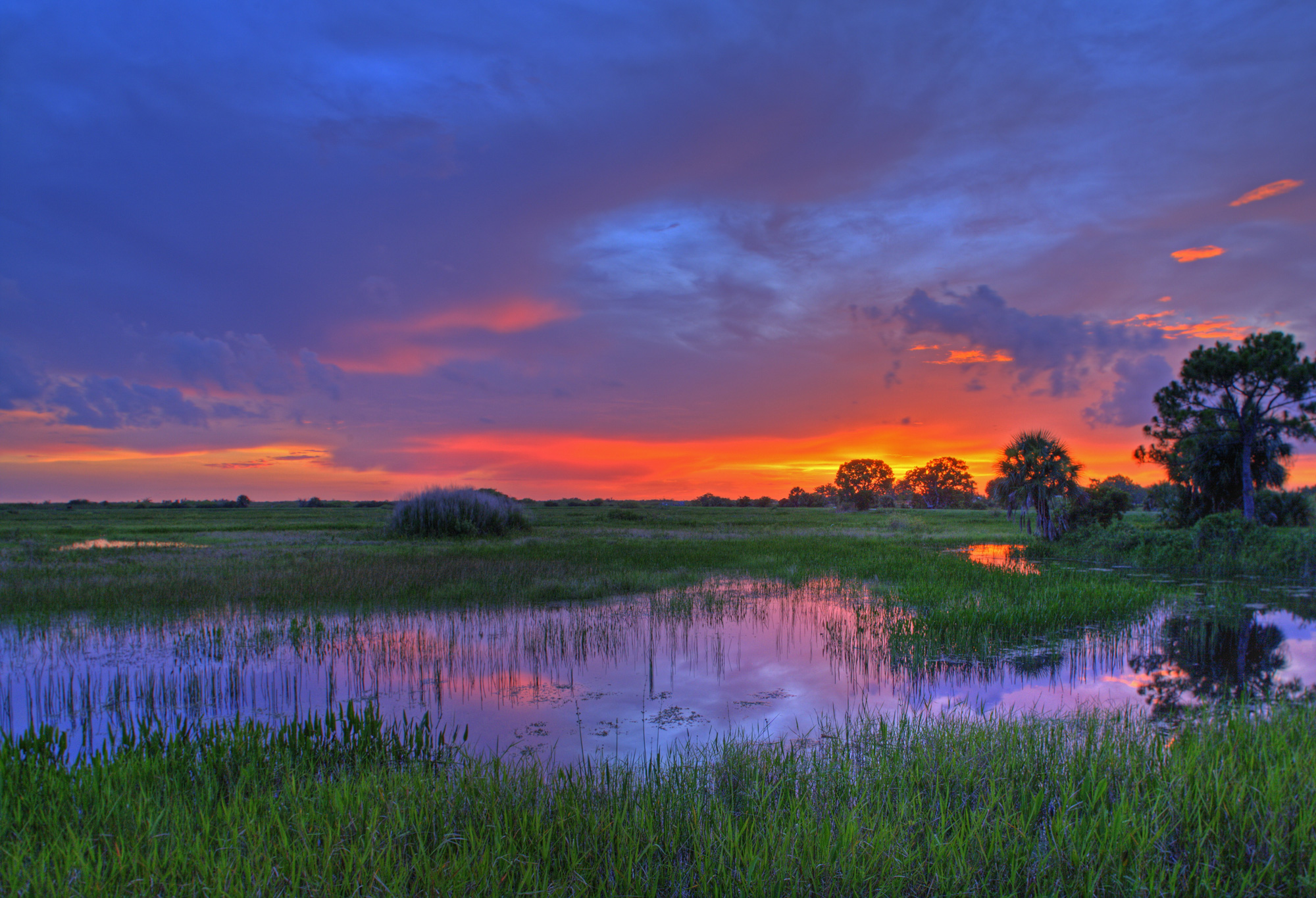 A beautiful sunset in Everglades National Park