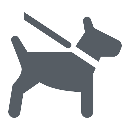 Dog on leash icon