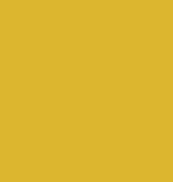 Moon shape icon