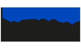 Flexdata logo