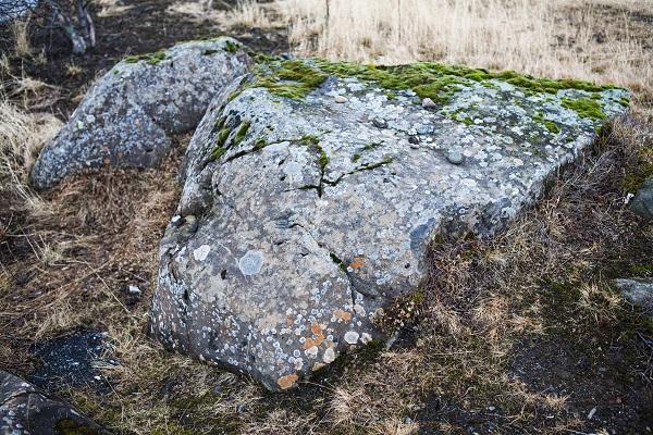Hidden Folk Stone