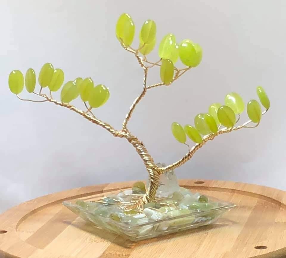Tee's Trees