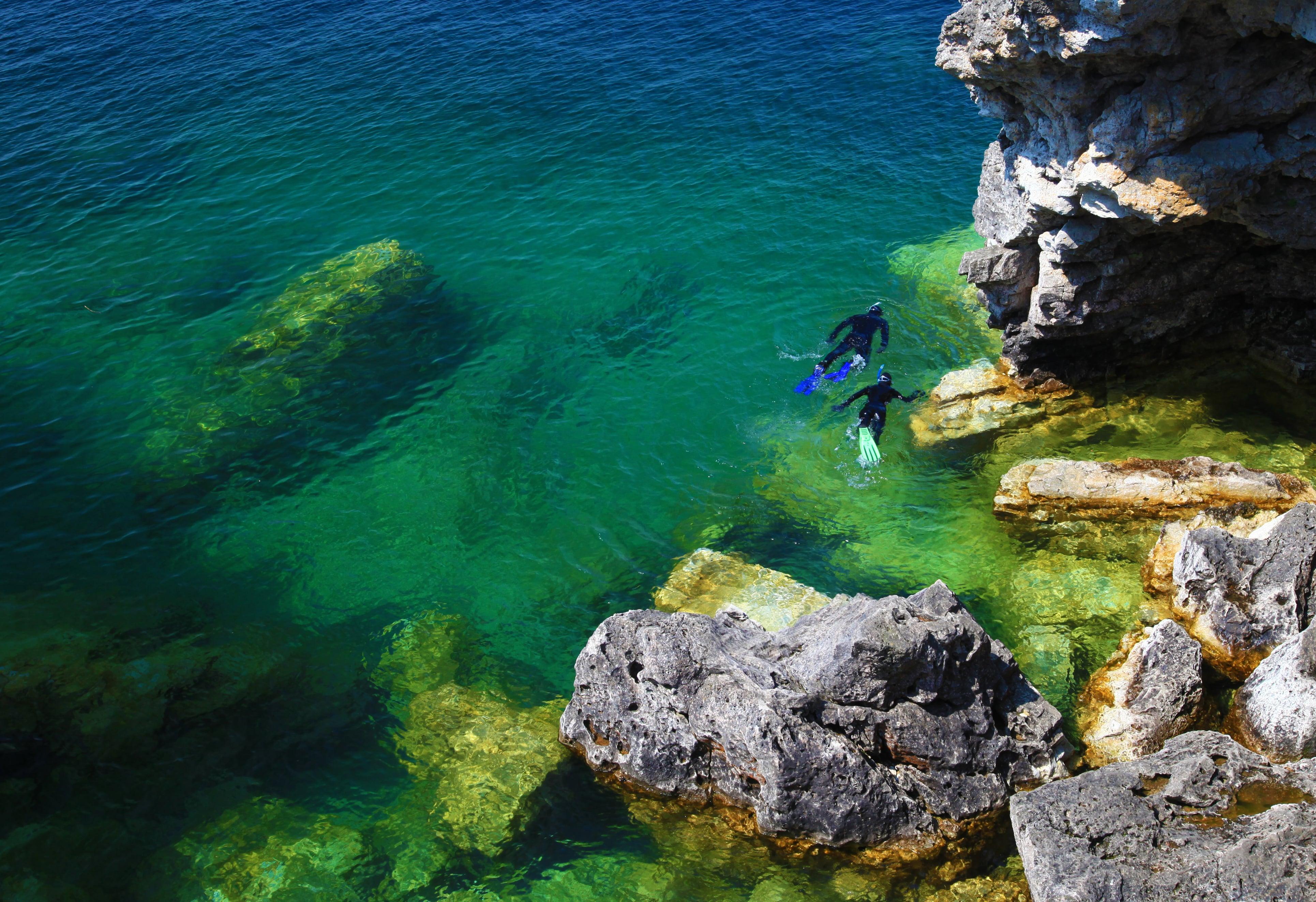 Snorkellers in water