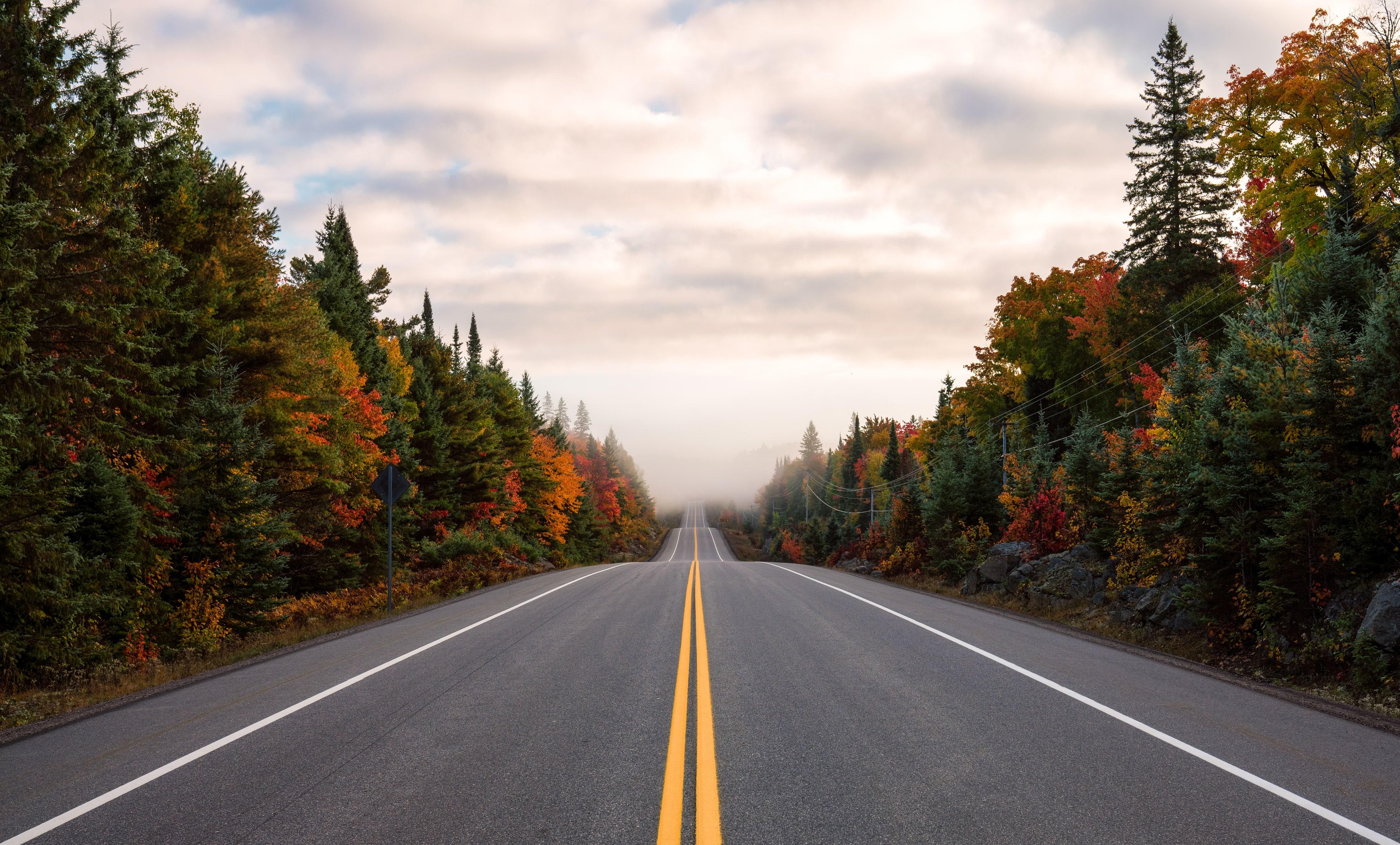 Empty backroad during Fall season