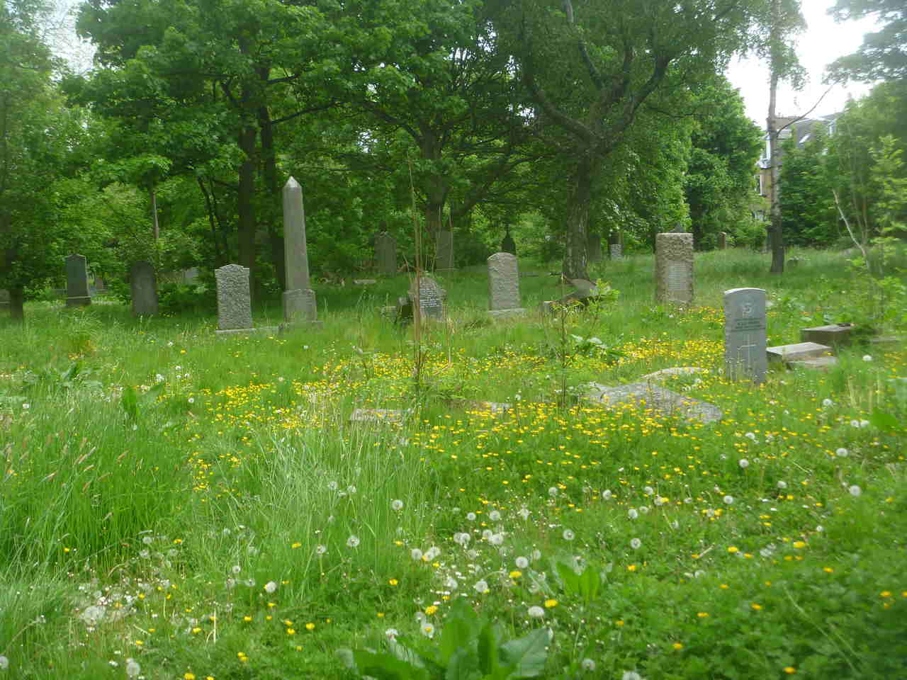 The cemetery is a wildlife haven