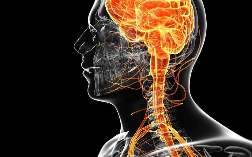 Nervio vago y ansiedad: Ejercicios bajar el estrés