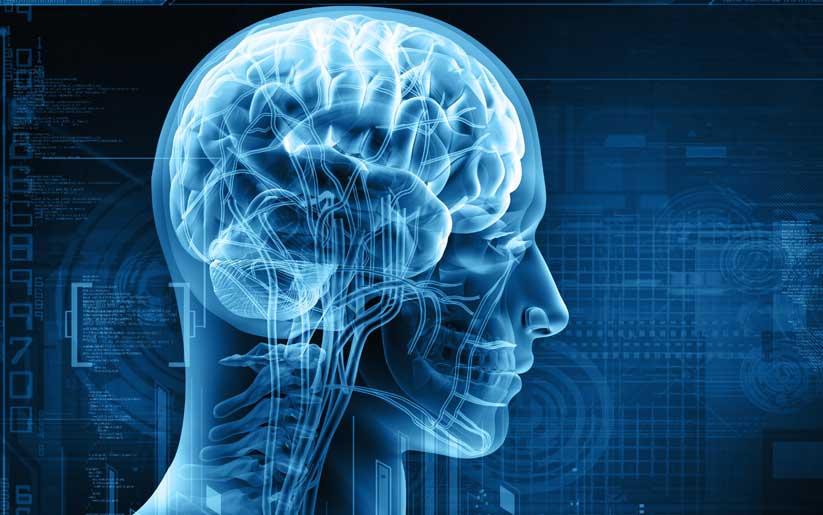 Que es y cómo bajar los niveles altos de cortisol en el cuerpo