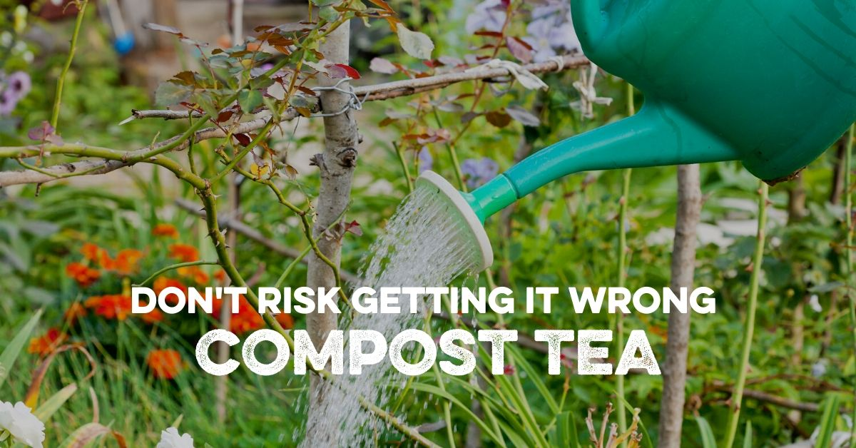 Don't risk getting it wrong...Compost Tea!