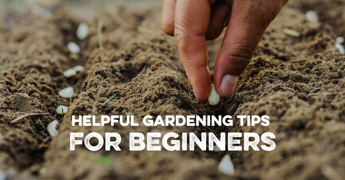 Helpful Gardening Tips for Beginners
