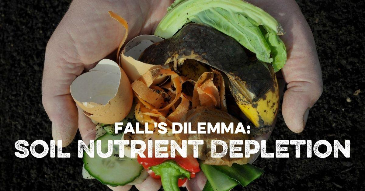 Fall's Dilemma: Soil Nutrient Depletion