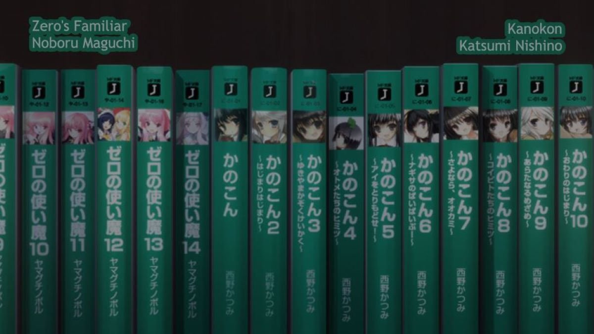 Bookshelf full of light novels | Translation into other languages | What is a Light Novel as Compared to More Traditional Literature?