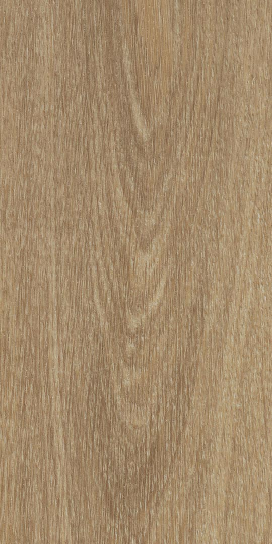 Vinylboden - Natural Giant Oak - Ansicht 3