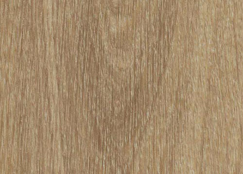 Vinylboden - Natural Giant Oak - Ansicht 1