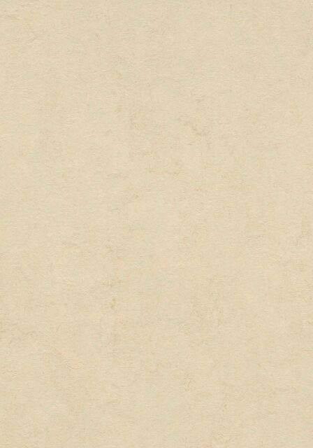 Barbados Linoleum Flächenansicht