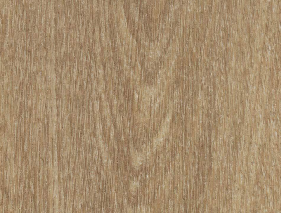 Flächenansicht Natural Gian Oak