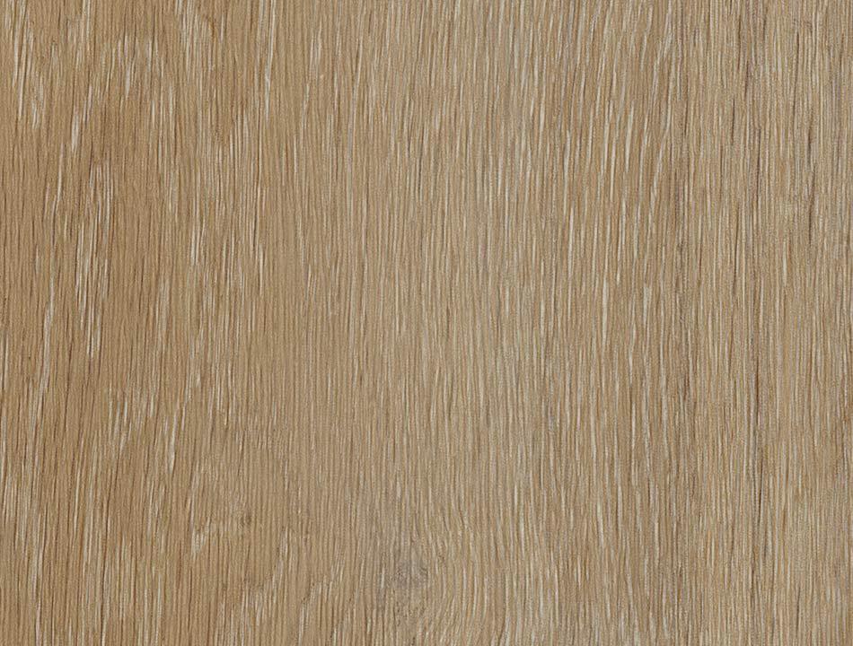 Flächenansicht Golden Oak