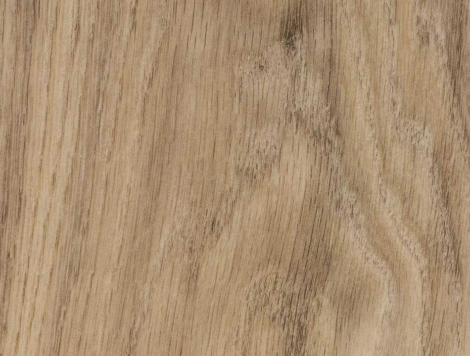 Flächenansicht Central Oak