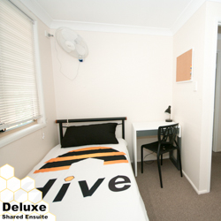 Room 3, 19A Dunsmore Street, Kelvin Grove, Queensland