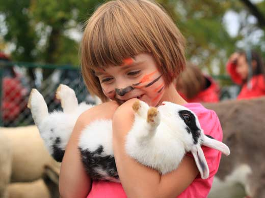 young girl holding rabbit at Barnfest