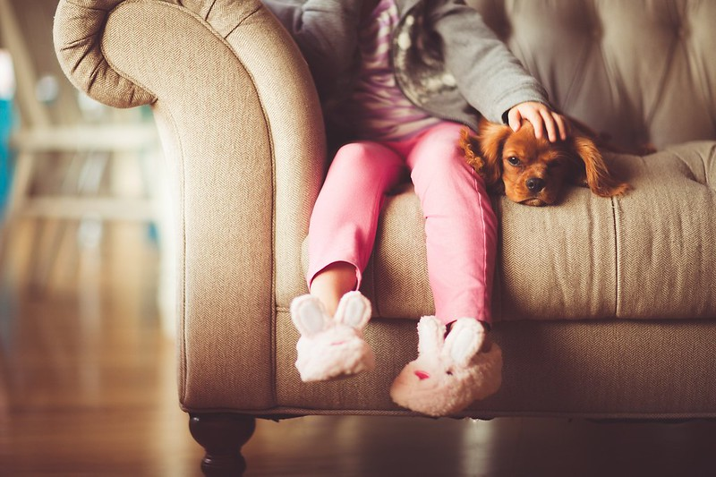Little girl watching a movie on Sky with her dog.