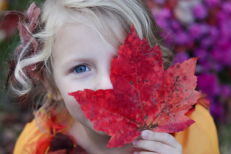 Girl playing with an autumn leaf.