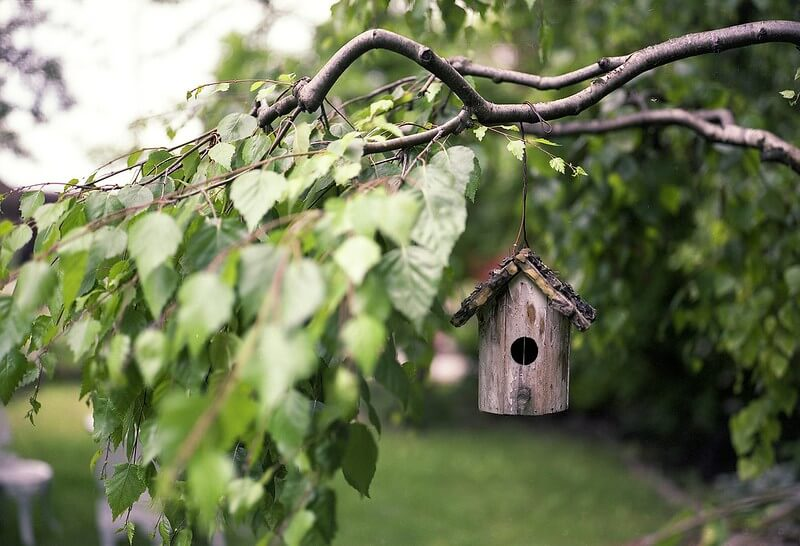 A tiny bird house hanging from a tree branch.
