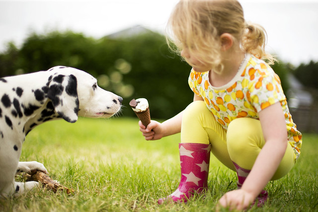 young girl sharing ice-cream with her dog