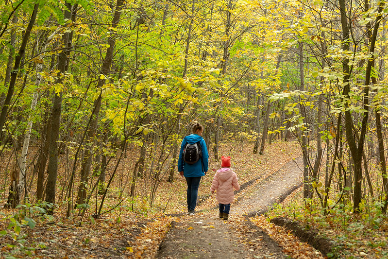 Child and parent walking a wood path.