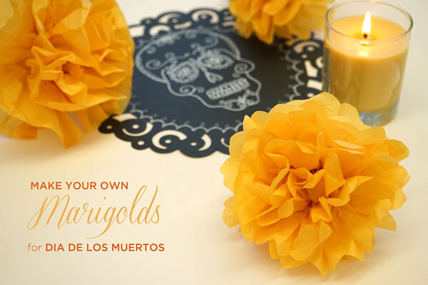 Make your own marigolds