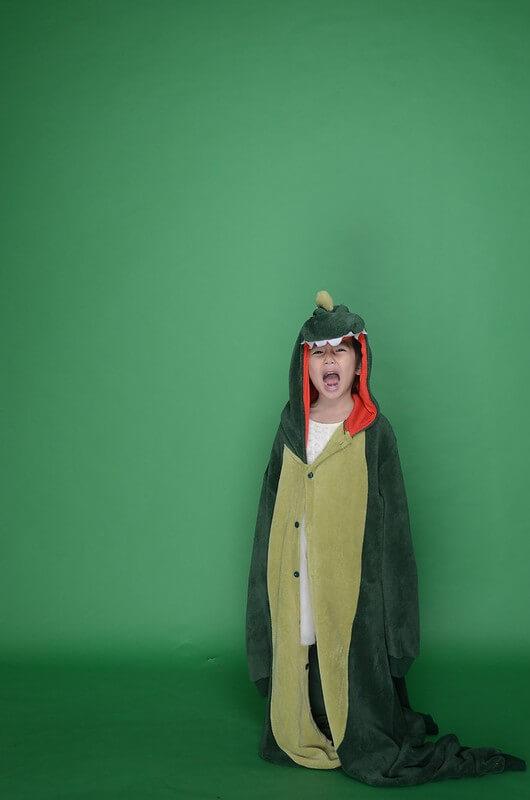 Dinosaur Puns
