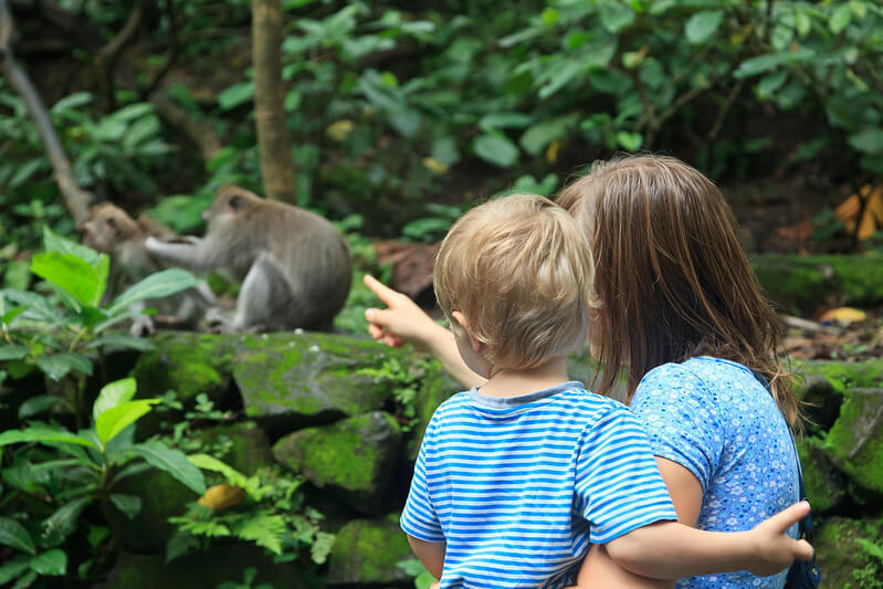 A Child And Parent Seeing Monkeys At The Zoo